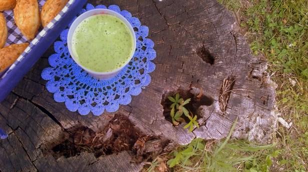 Освежающий напиток: кефир+любая свежая зелень.