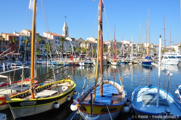 Sanary_sur_Mer_port